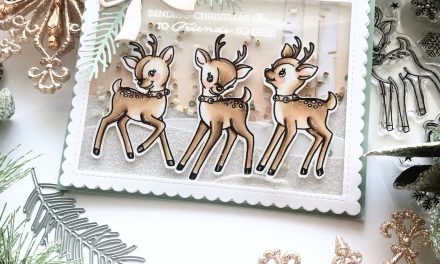 Fun Shaker Card With Rooftop Reindeer Set…